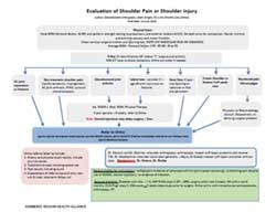 Evaluation of Shoulder Pain or Shoulder Injury