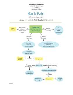 management of back pain